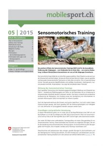 thumbnail of sensormotorischestraining
